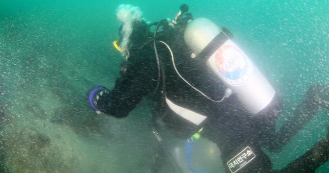 해양 생물 관찰 중인 다이버 - 극지연구소 제공